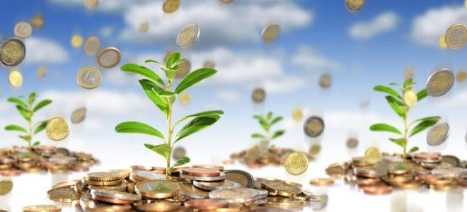 Капитализация вкладов: основные виды, расчет процентов + советы по выбору вклада