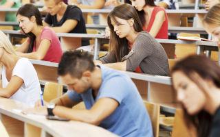 Характеристика студента с места учебы — основные требования