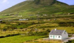 Бесплатная земля от государства: как получить? Условия и нюансы