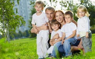 Как получить земельный участок многодетной семье — условия предоставления