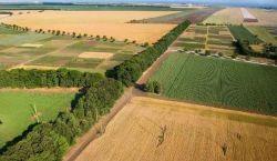 Особенности продажи земли сельскохозяйственного назначения и их основные цели