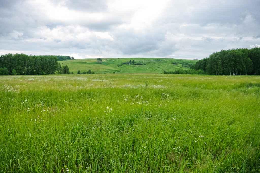 Очередь на земельный участок для многодетных семей практические советы